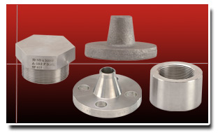 Stainless Steel Component Forging / Forged Parts